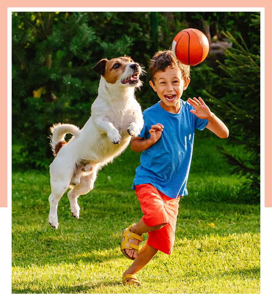 Image of boy playing with his dog